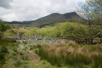 Clogwyn y Gwin Path and Maesgwm (61 of 135)