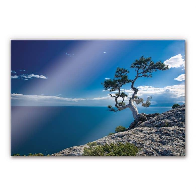 tableau en verre acrylique mer et terre