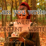 Content writer