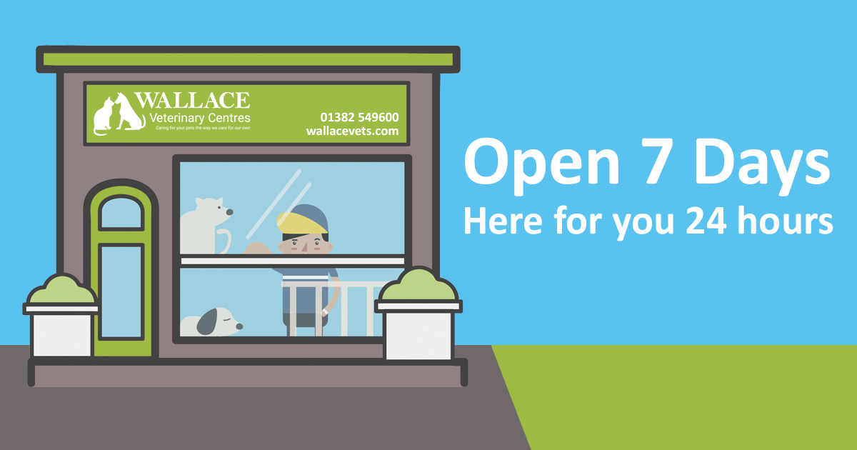 Out of Hours Emergency Service - Wallace Vets