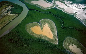 Earth From Above - France, Yann Arthus-Bertrand Aerial Photography  1 - France: Heart in Voh, New Caledonia (French Overseas Territory) Pictures