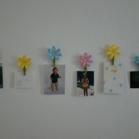 Flower Art Photo Display Clips Wall Decor