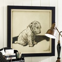 Dog with Expressions Wall Art