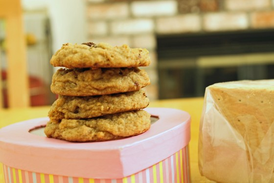 Graham Cracker Chocolate Chip Cookies 3--082013