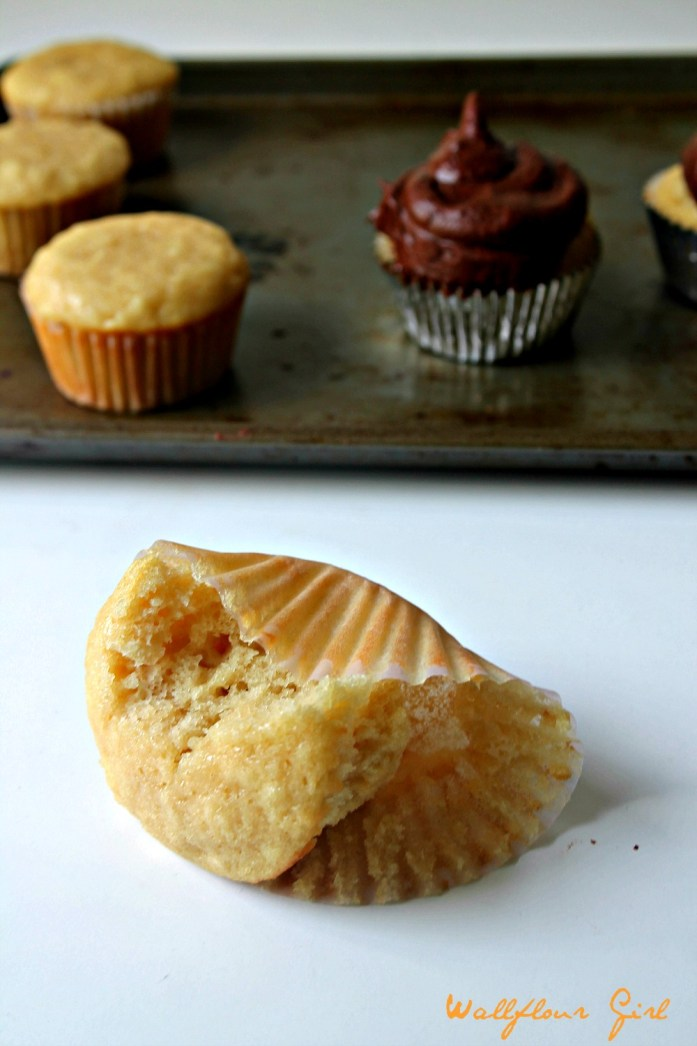 Vanilla Cupcakes with Chocolate Buttercream Frosting 10--061414