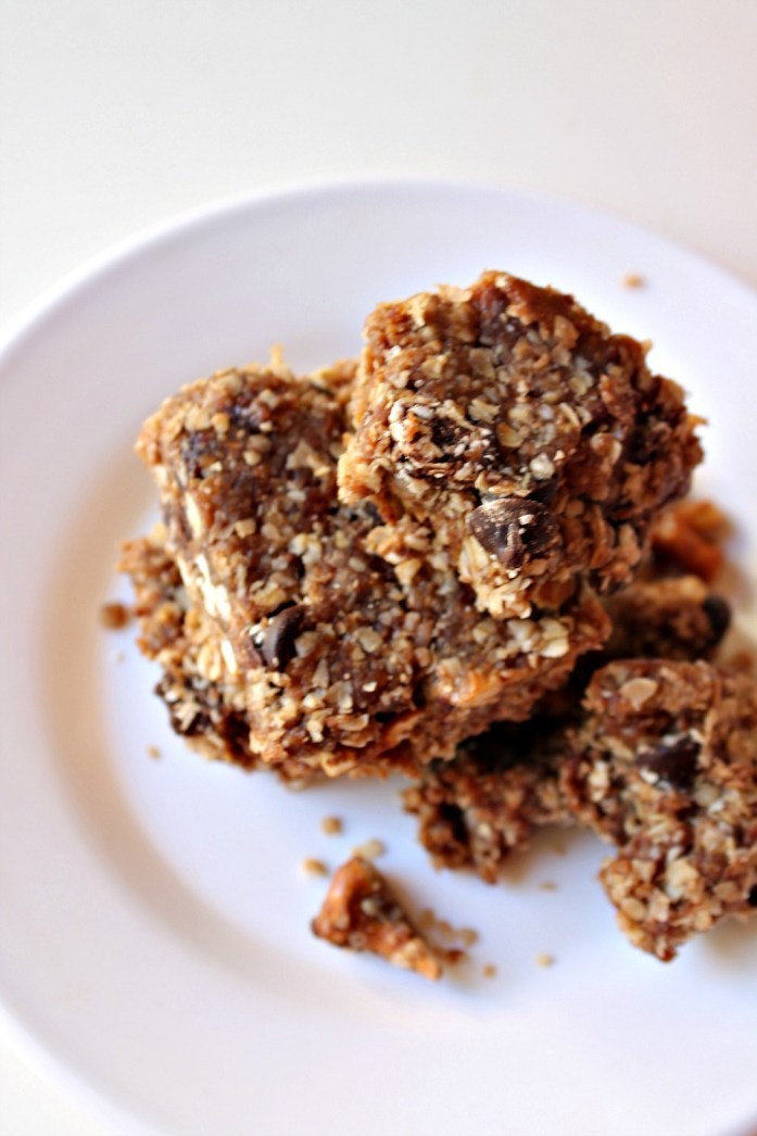 Raw Salted Chocolate Oat Healthy Bars with Dates and Coconut 13--100414