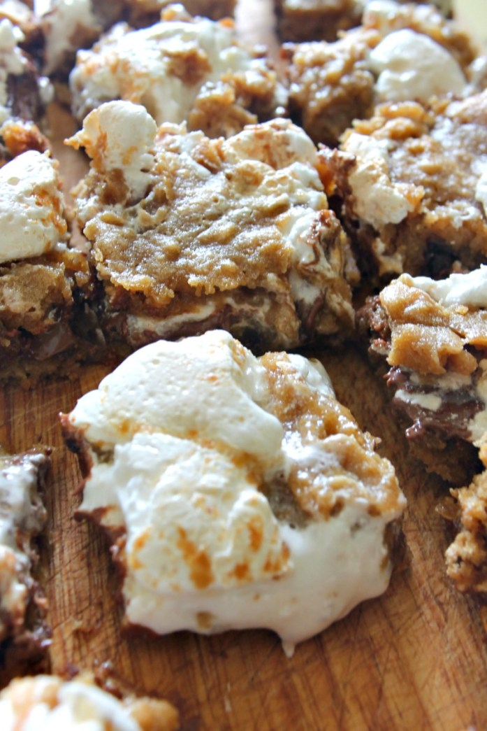 S'more-Bars 11--052515