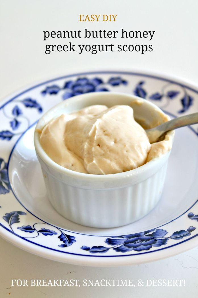 Peanut Butter Honey Yogurt Scoops 2--090315