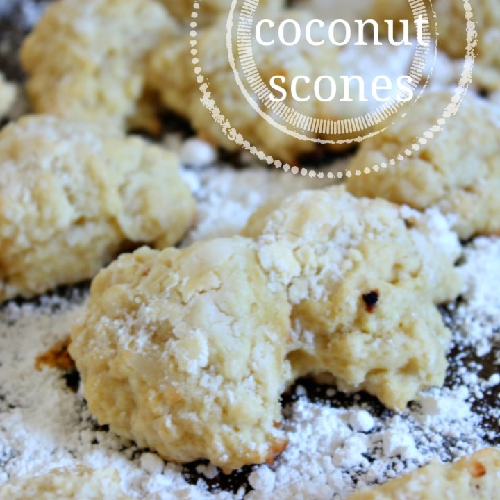 Vegan Coconut Scones {and some updates from Florida!}