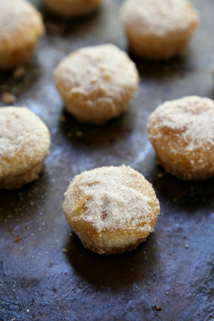 Mini Churro Donut Muffins 10--042016