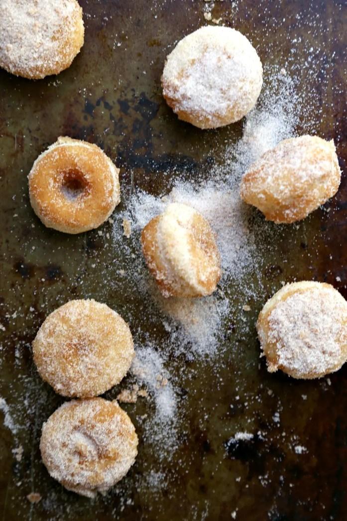 Mini Churro Donut Muffins 16--042016