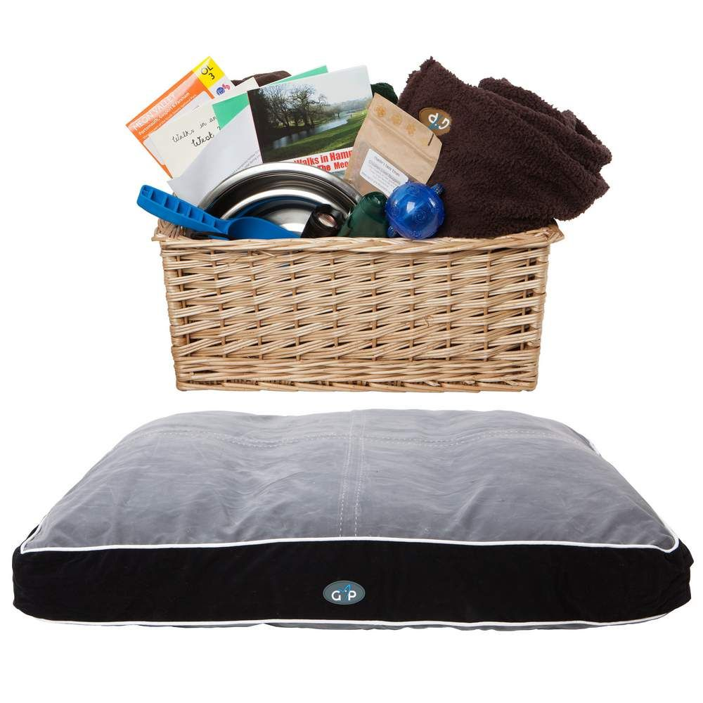 Welcome dog basket with toy treats comofy bed dog walks and tags as well as beowl and blankets for our furry friends