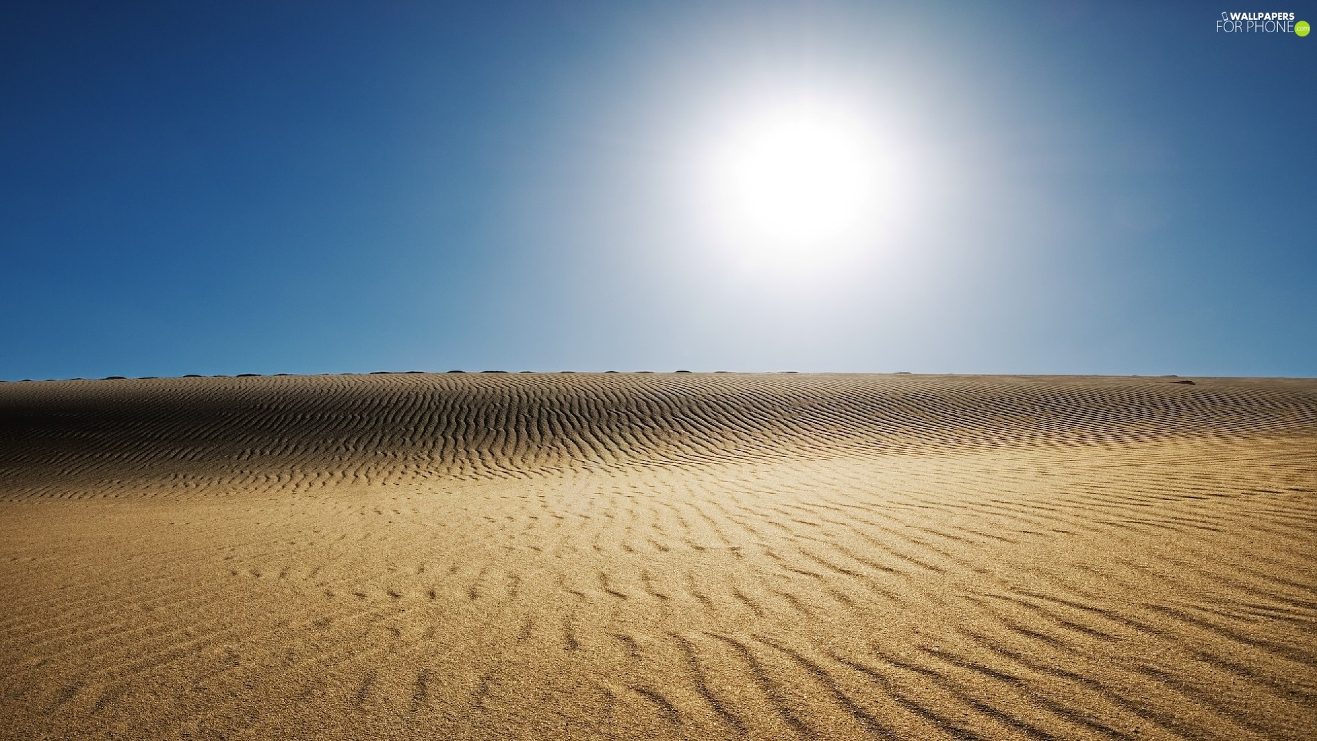 Image result for desert horizon