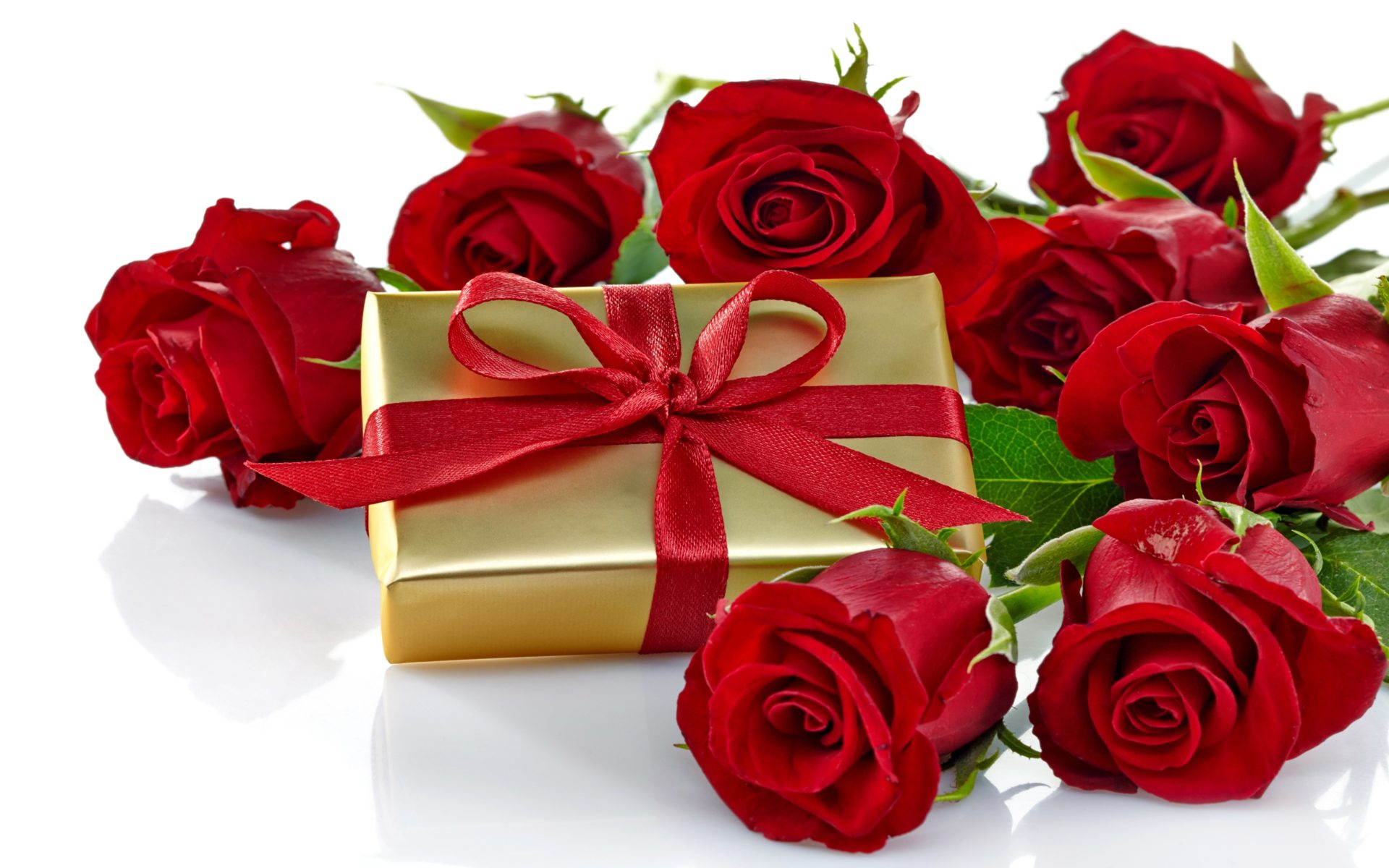 Roses Romantic Love Gift Bow Nature Flowers Hd Wallpaper 1918
