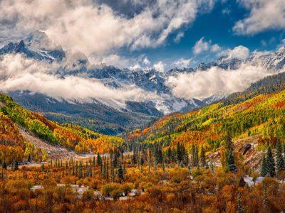 Wonderful Autumn Landscape Forest Yellow White Fog Vapor ...