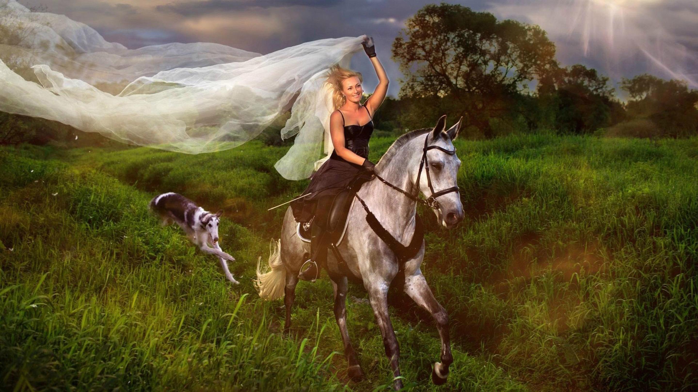 Blue Girl Jockey And White Horse Hair Veil Field With