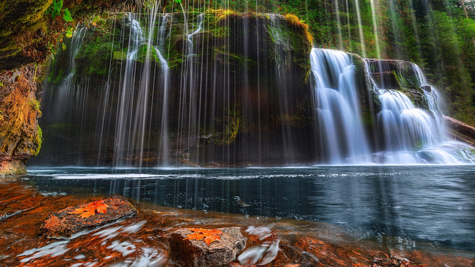 Lower Lewis River Falls Gifford Pinchot By Forest