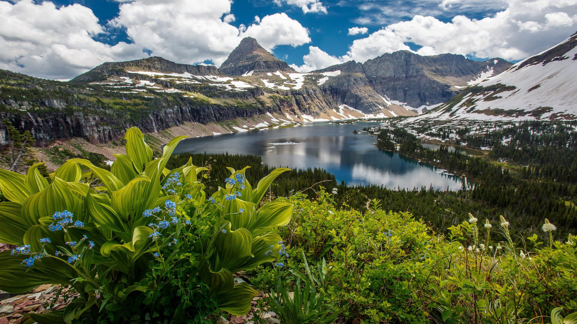 Glacier National Park In The U S State Of Montana Hidden