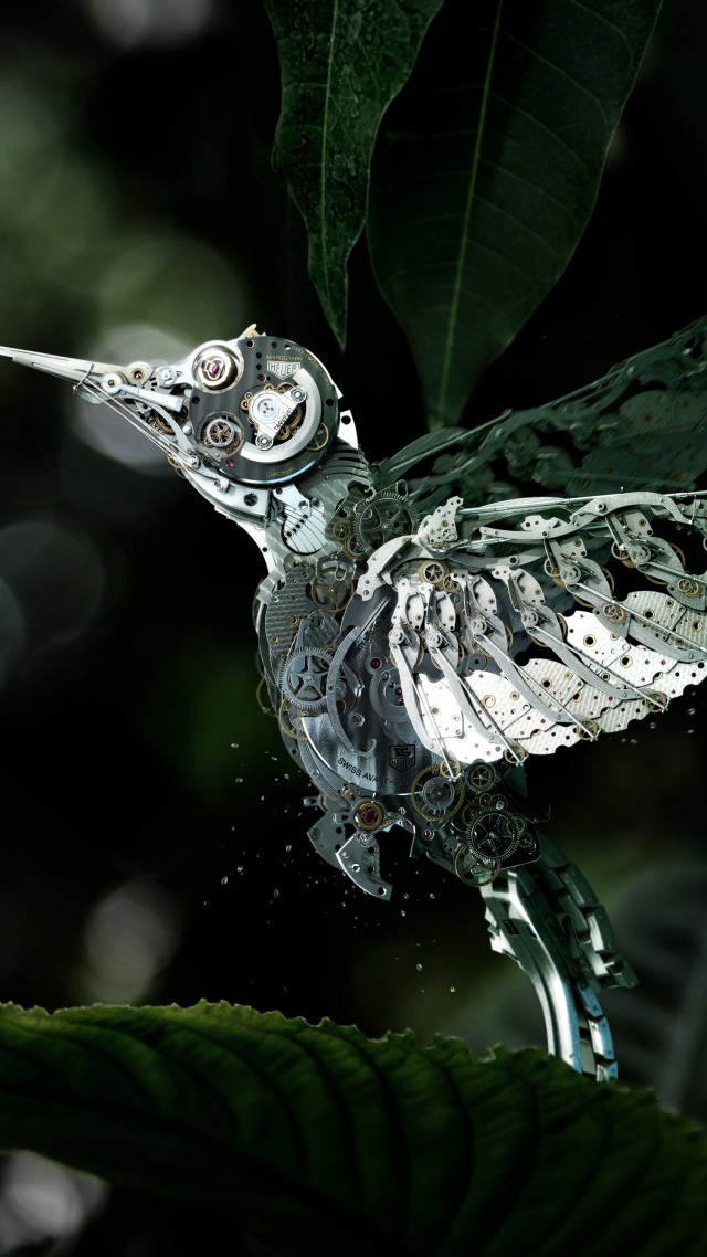 Wallpaper Hummingbird Olibri Steampunk Flower Leaves Green Drops Flying Bird Nectar