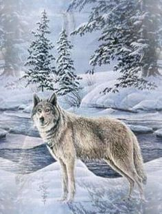Download Christmas Wolf Wallpaper Gallery
