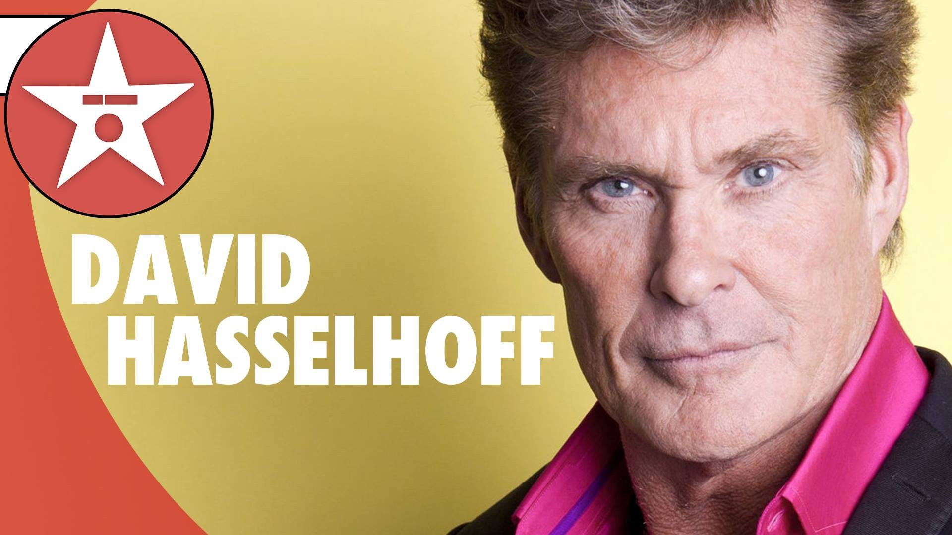David Hasselhoff Wallpaper Puppies The Galleries Of Hd Wallpaper