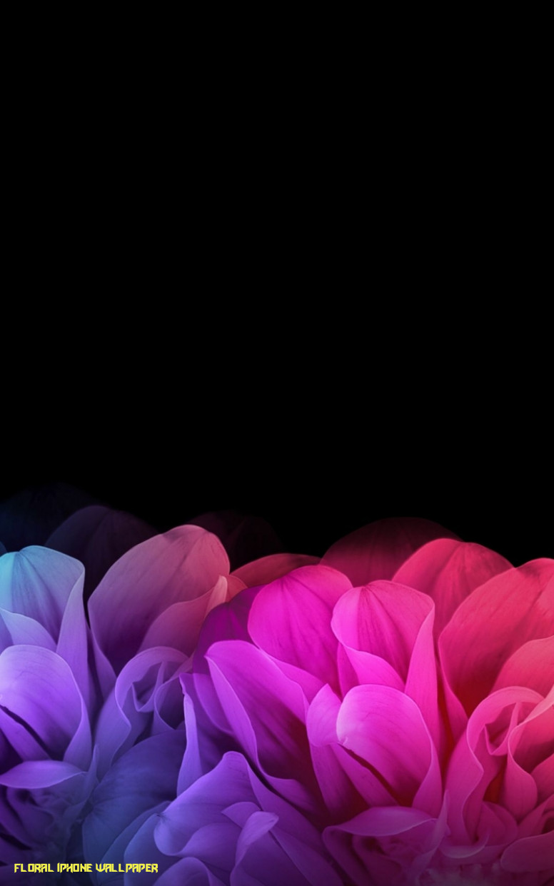 Free Download Black Floral Iphone Wallpaper Phone Backgrounds Dark Colorful Flower Background 776x1241 Download Hd Wallpaper Wallpapertip