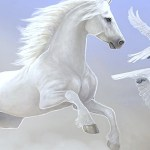 Seven Horse Wallpapers Group White Data Src Download 1920x1080 Download Hd Wallpaper Wallpapertip