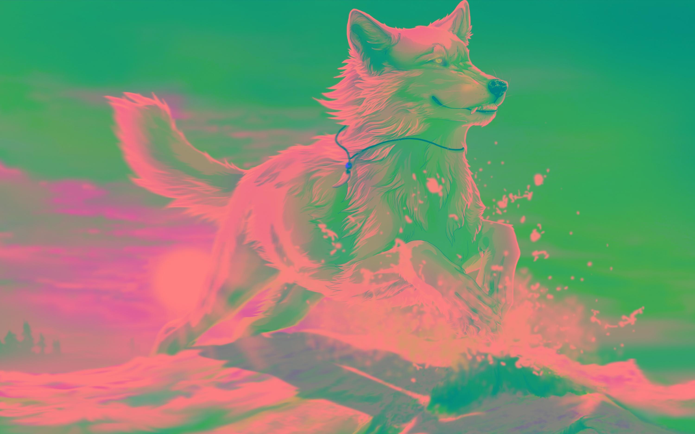 fonds d ecran loup pour ipad fond d
