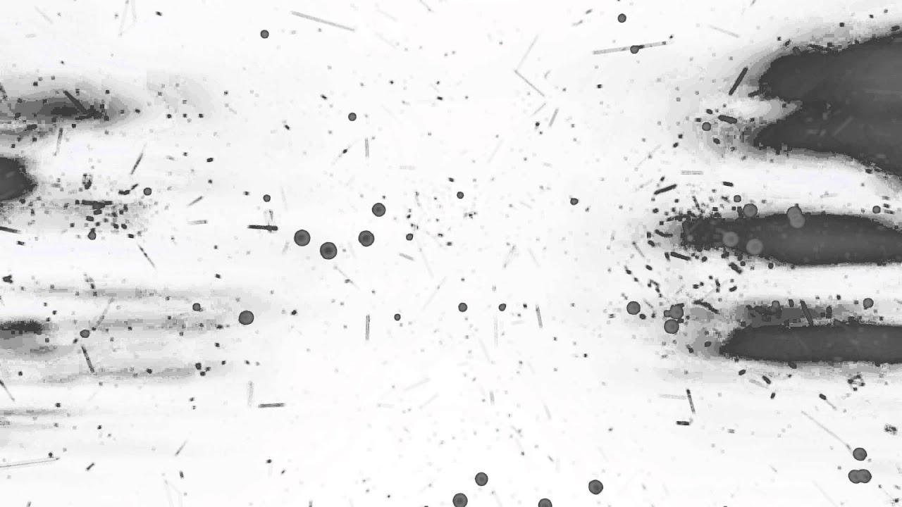 images de fond blanc 4k 4k fond d