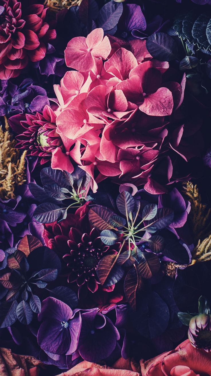 Floral Iphone Wallpapers By Preppywallpapers Iphone Wallpaper Floral Hd 736x1308 Download Hd Wallpaper Wallpapertip