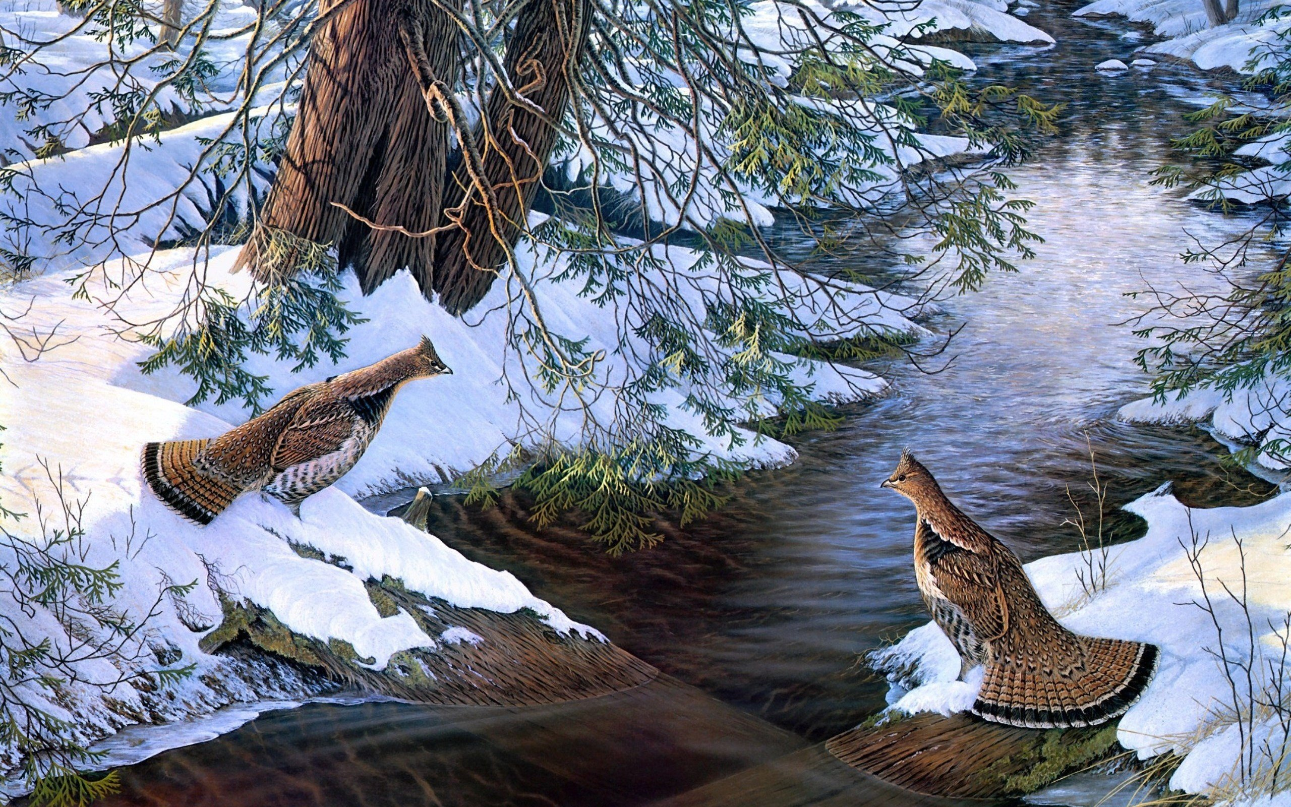 Paintings Snow Birds Creek Grouse Wallpaper 2560x1600