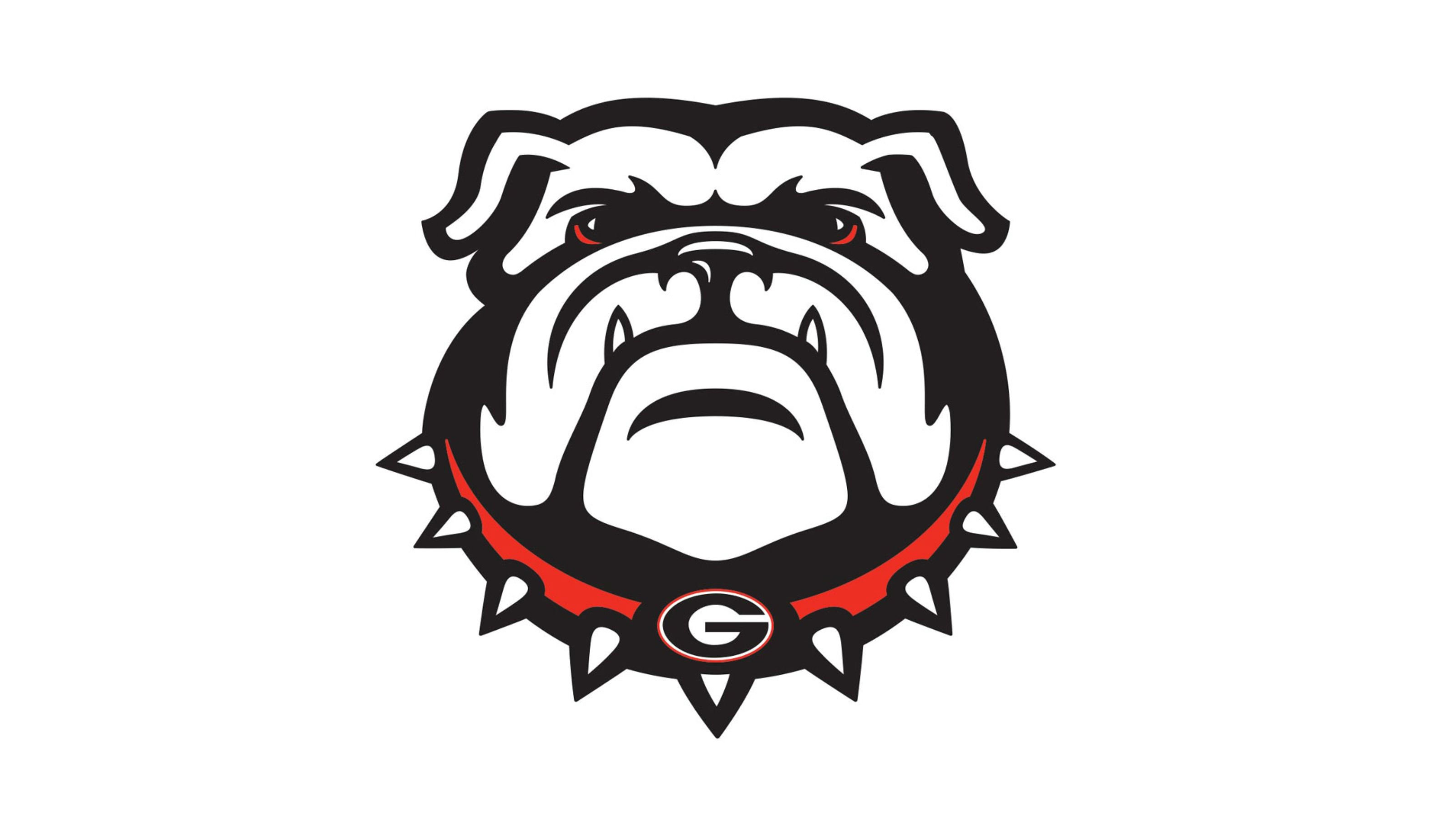Georgia Bulldogs College Football Wallpaper