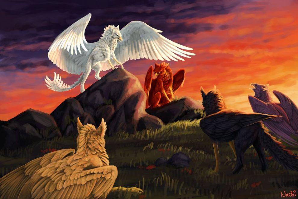 Image result for fantasy art griffin