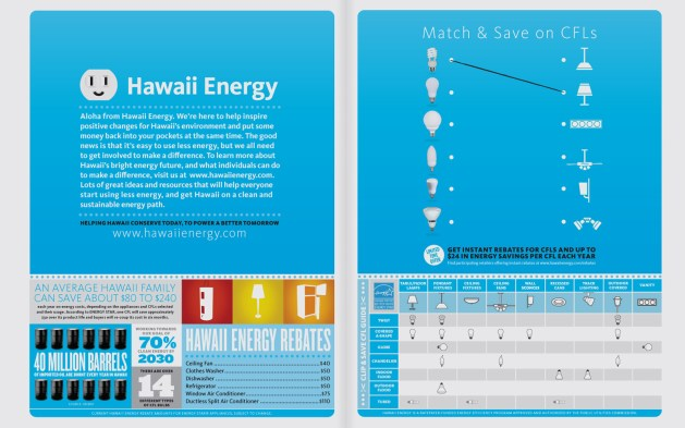 Image result for wall to wall hawaii energy