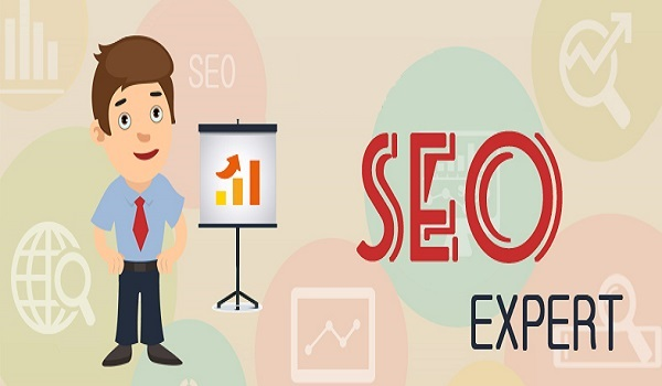 5 Things to Look for in an SEO Expert