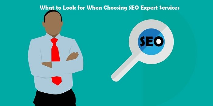 What to Look for When Choosing SEO Expert Services
