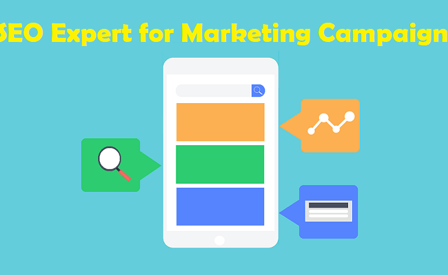 What's the Value of an SEO Expert in Your Marketing Campaign?