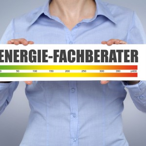 Energie-Fachberater