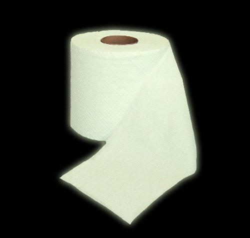 https://i2.wp.com/www.walyou.com/blog/wp-content/uploads/2009/08/glow-in-the-dark-toilet-paper-is-a-butt-saver1.jpg