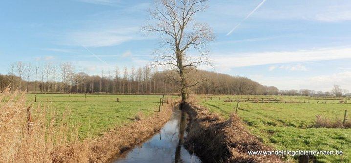 Wantebeek in Kruiskerke