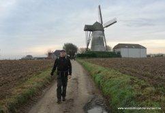 """molen """"Ter Zeven Wegen"""" Denderwindeke"""