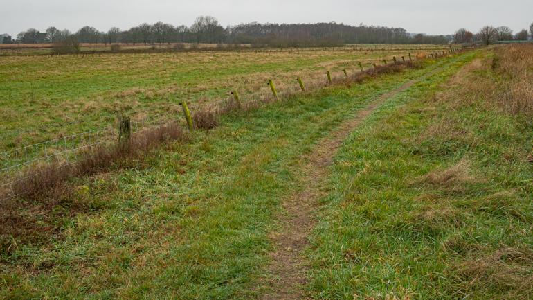 Graspad door de weilanden