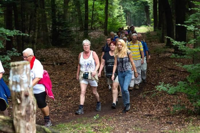Nederlandse wandelvierdaagsen