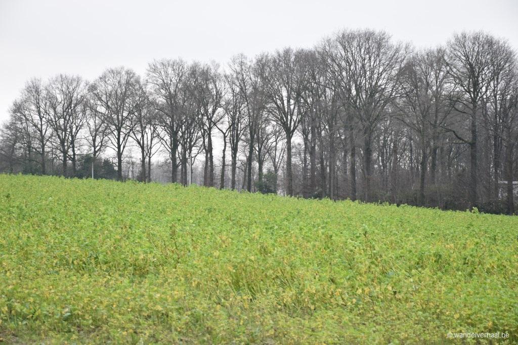 Boerenkrijgwandelroute