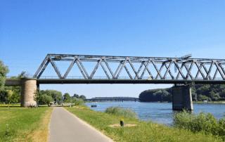 Wandern auf dem Rheinradweg