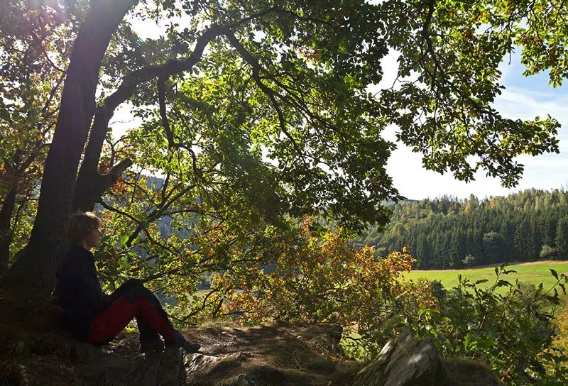 Atempause auf dem Felsen
