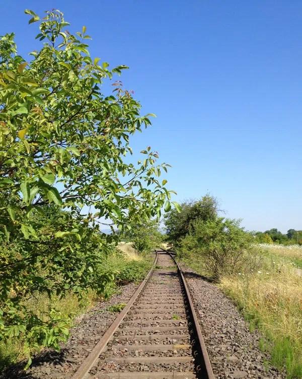 Alte Bahnstrecke nach Landau
