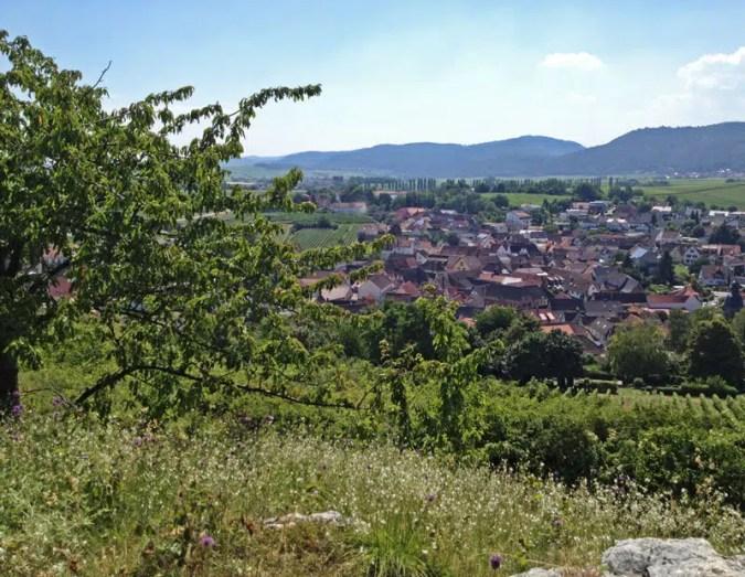 Blick auf Ilbesheim
