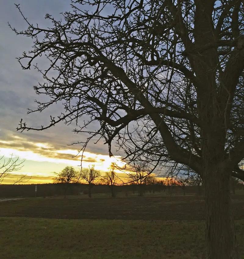 Sonnenuntergang in Mühlhausen