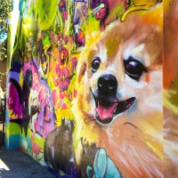 Murals in Seattle - A Map of Street Art Between Pike Place & Olympic Sculpture Park